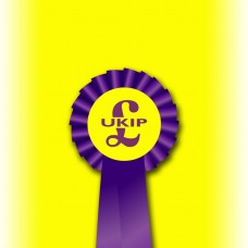 UKIP Party Single Tier Rosette